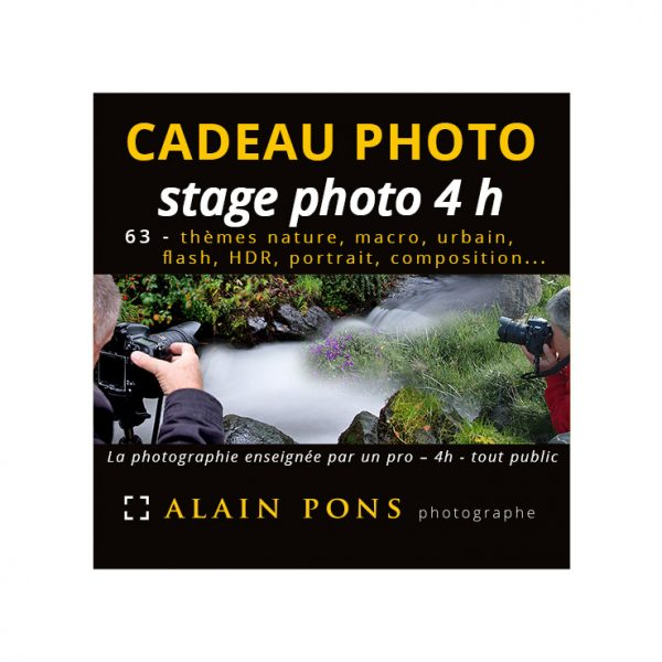 coupon cadeau stage photo 4h