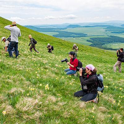 Le safari photo à la journée pour se perfectionner en photographie nature avec alain pons professionnel