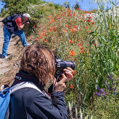 Le stage de formation photographie 4 heures avec Alain Pons, campagne ou urbain, pour les débutants ou les amateurs depuis longtemps