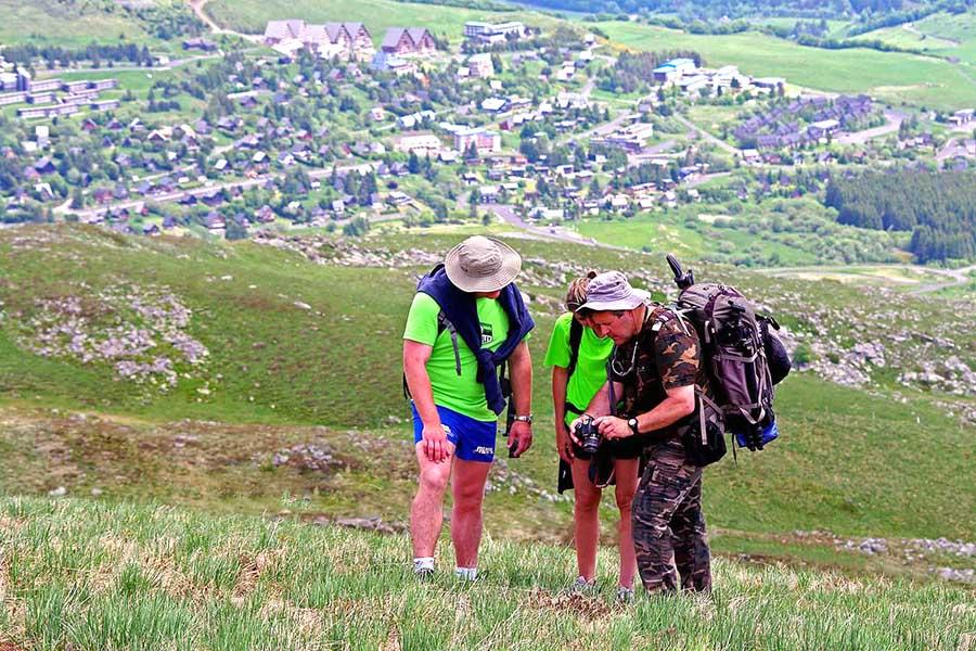 safari photo journée dans le massif du sancy avec Alain Pons Photographe